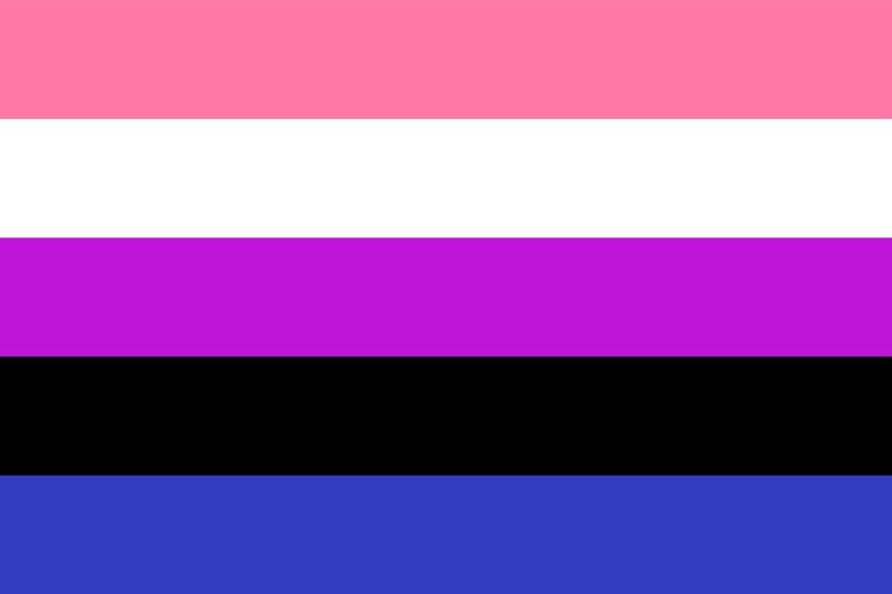 Genderfluid/Genderflexible Flag